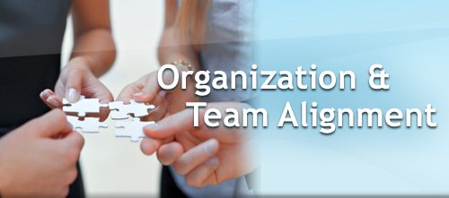 Organization & Team Alignment